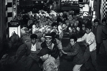h2n-imamura-pigs