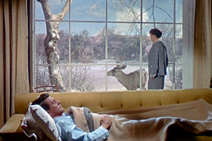 Tout ce que le ciel permet (All that heaven allows) - Douglas Sirk - 1956 dans * 250 AllThatHeavenAllowsstill