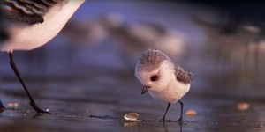 piper disney pixar final